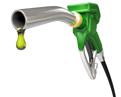 Fallo a favor de Argentina por biodiesel