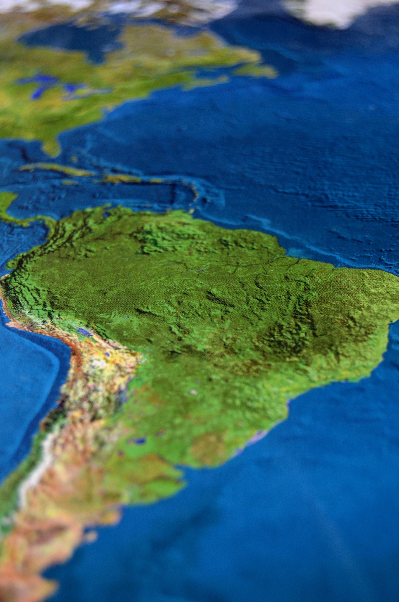 The MERCOSUR and the Pacific Alliance. A Turning Point?