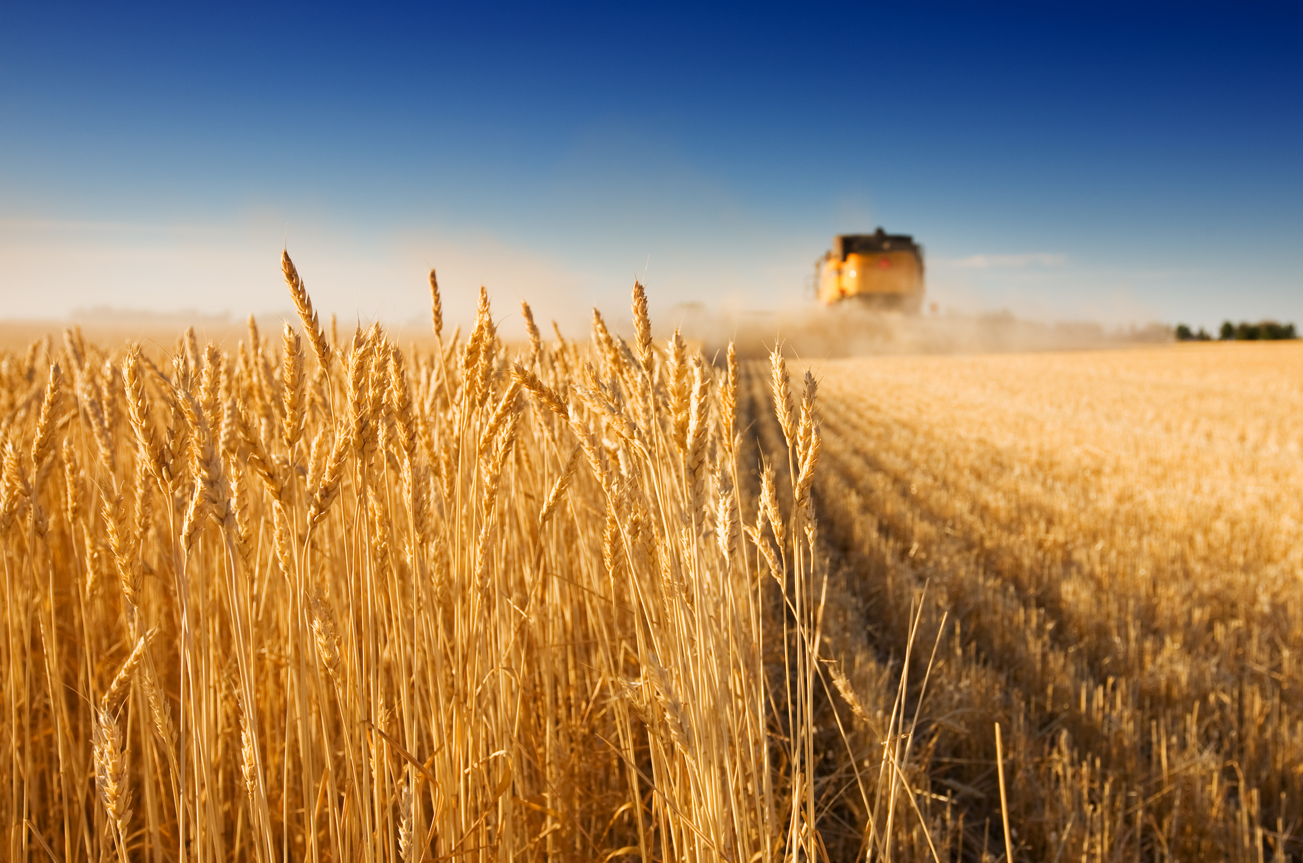 México y Brasil revisan acuerdo económico para sumar bienes industriales y agrícolas