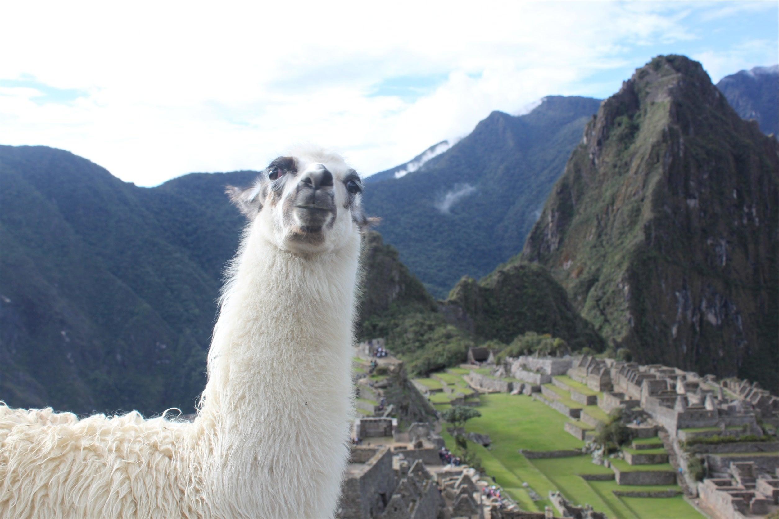 Perú aprobó el Acuerdo sobre Facilitación de Comercio de la OMC