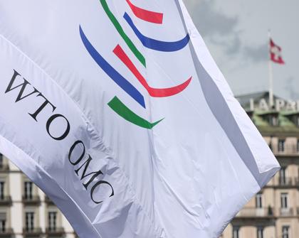 Taller sobre negociaciones en la OMC