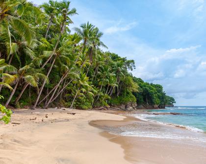 CARICOM busca reposicionarse en el escenario internacional