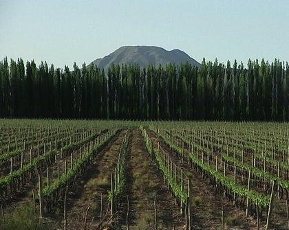 Territorio, infraestructura y economía en la Argentina