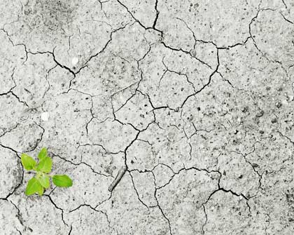 Como aprovechar la Cuarta Revolución Industrial para salvar al planeta