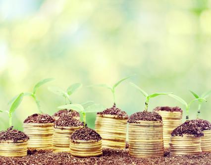 Finanzas inclusivas para alcanzar los ODS