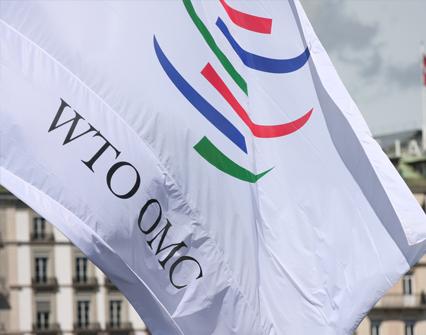 Representantes de trece países discuten en Canadá la reforma de la OMC