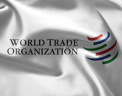 ¿OMC se queda sin órgano de solución de diferencias?