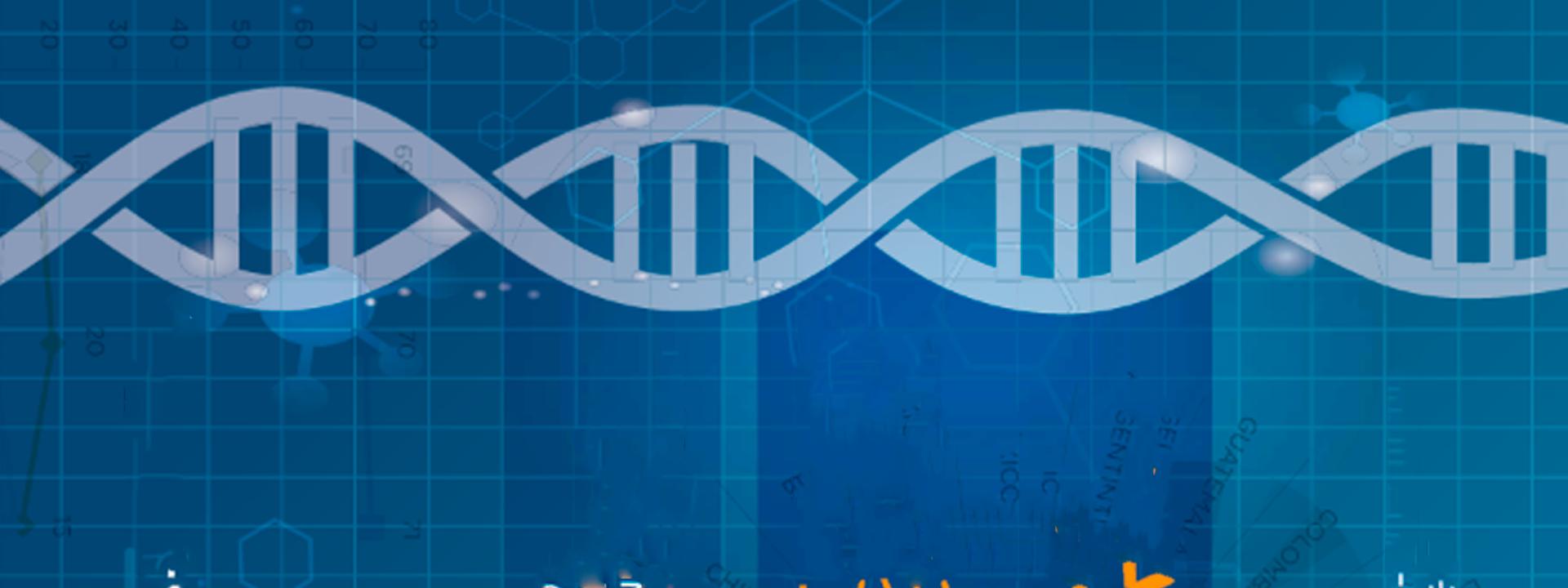 El ADN de la integración